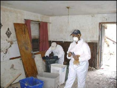 Inside a moldy house