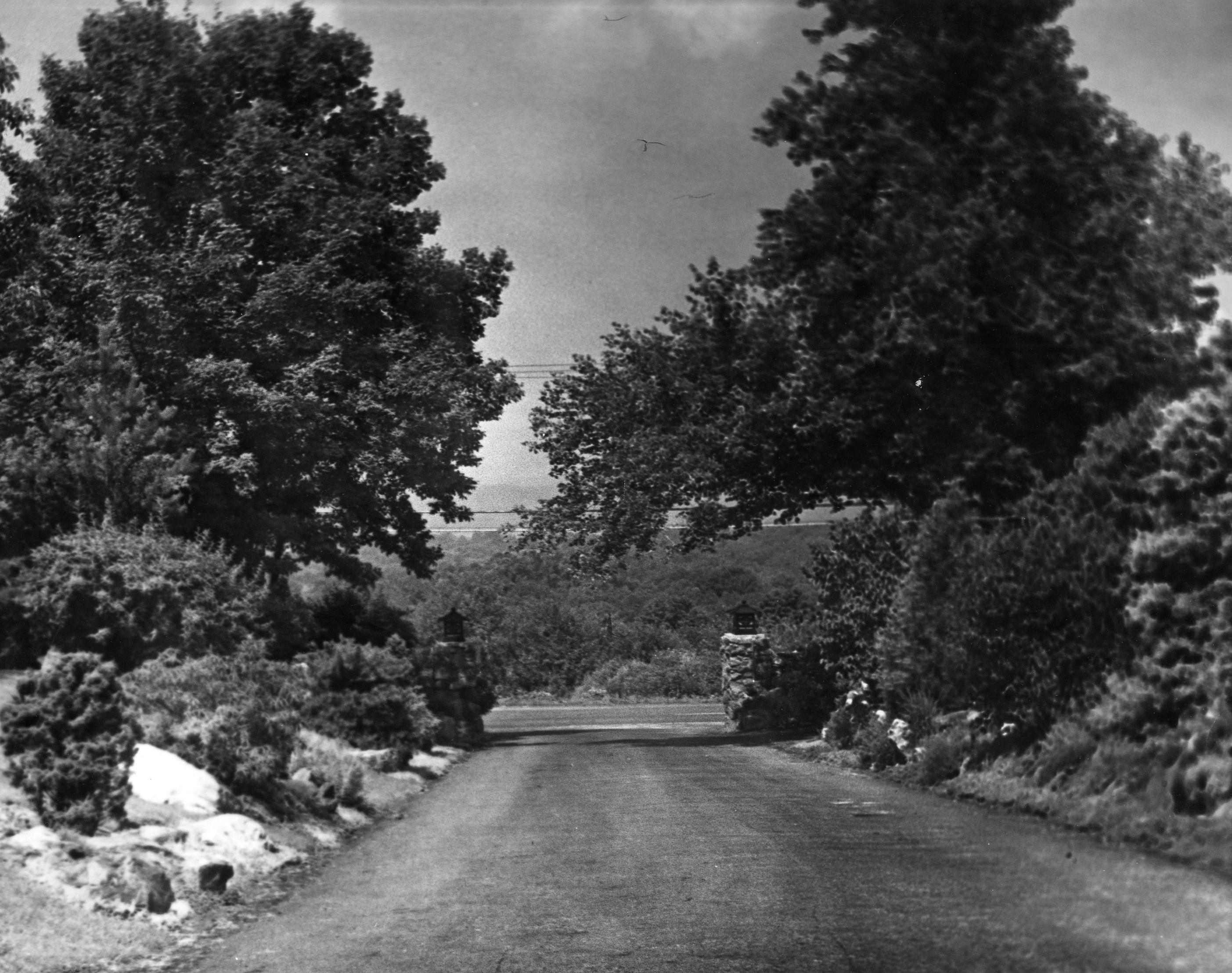Motherhouse Driveway_West
