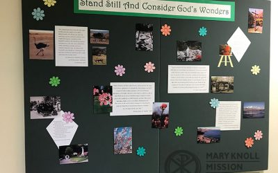Stand Still And Consider God's Wonders