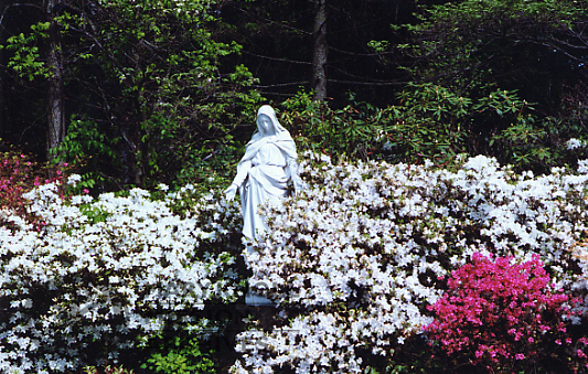 Statue surrounded by flowers